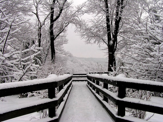 Winter Landscape Photography Black And White