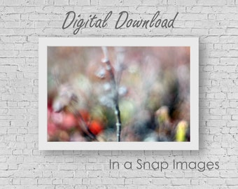 All the Pretty Colours - Boho Digital Download, Abstract Photography, Dreamy Photography, Poetic Photography, Nature, Living Room, Surreal