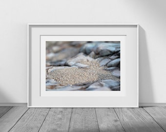 After the Tide - Digital Download Photograph, Beach Decor, Cottage Style, Sand Photo, Beach Photography, Beach Art, Coastal Decor
