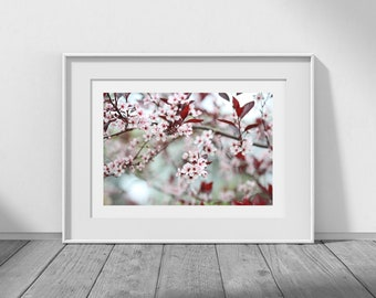 Sweet Sandcherry - Printable Photos, Digital Download, Flower Download, Nature Photography, Flower Photography, Photography Printables, JPG