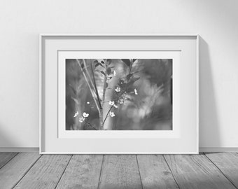 Spring in Monochrome - Black and White Photography, Digital Download, Interior Design, Nature Photos, DIY Decor, Cottage Chic, JPEG