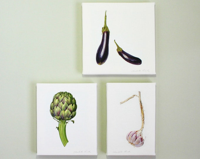 Featured listing image: Box Canvas set with Vegetable Illustrations