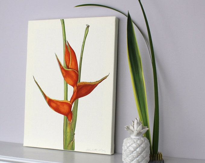 Featured listing image: Tropical canvas with Heliconia Illustration.