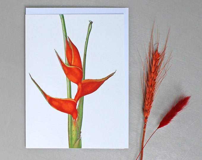 Featured listing image: Card with Tropical Heliconia Illustration