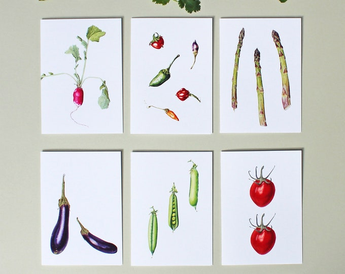 Featured listing image: 6 Cards with Vegetable Illustrations