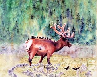 Elk art, Elk print, Elk wall art, wildlife wall art, Yellowstone National Park, wildlife prints, wildlife painting, watercolor print,