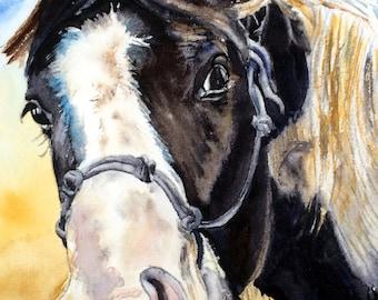 Horse Art Print, Horse Art painting, Horse print, Equine art, Equine print, Equine painting, watercolor painting, giclee print, black/white