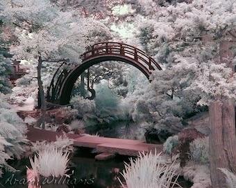 Japanese Garden Bridge - Infrared Photograph - 8.5 x 11