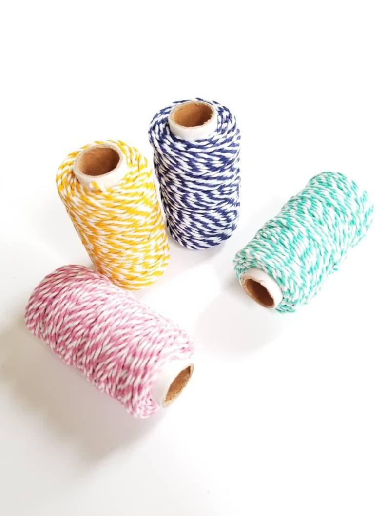 Twine  Choose A Color  65 Feet  Hemp Twine  Biodegradable image 0