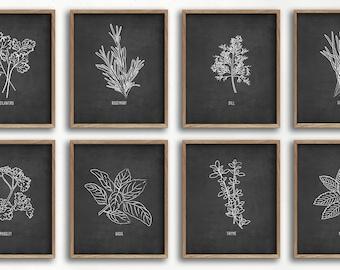 black and white herb art print set, farmhouse decor, kitchen art, dining room art, botanical print, herb illustrations, unframed prints