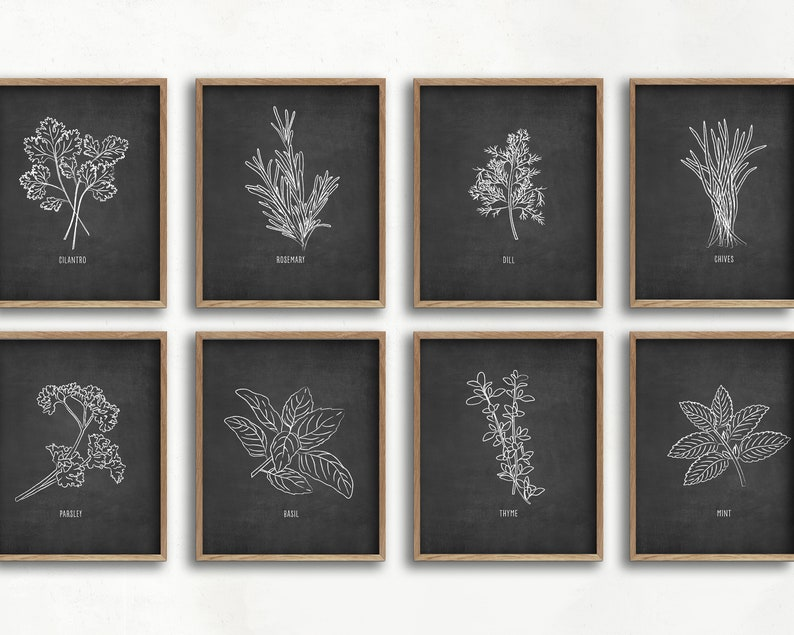 Herb Art Print Set Kitchen Decor