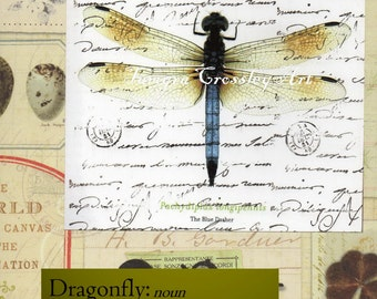 Dragonfly Dictionary Mixed Media Digital Download ,Print, Transfer, Image, postcard, page, insect, nature, instant, art, science, #16/JF