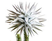 Modern Tree Topper Silver Polish Star 3D Spiky Paper Decoration for Christmas Tree Holiday Decorating - Sterling Silver