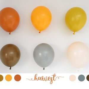 PASTEL Matte Blush Latex Balloons Party Decoration Air fill Helium 5 Inch 9 Nude Round 11 36,24 Matte Finish 16 Custom Colors