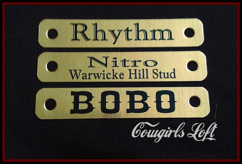 Gold Brass ID Tag Bridle 58 in X 3.5 in Saddle HORSE HALTER Name Plates w chicago screws breastcollar nameplate - Cowgirls Loft
