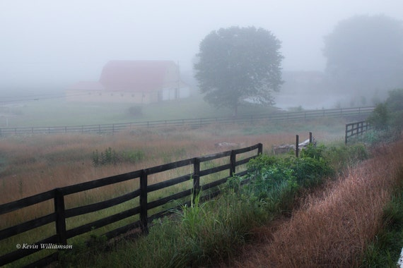 Misty Morning Meadow —Photo Print or Canvas Gallery Wrap