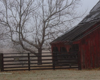 Ice Fog Morning —Photo Print or Canvas Gallery Wrap