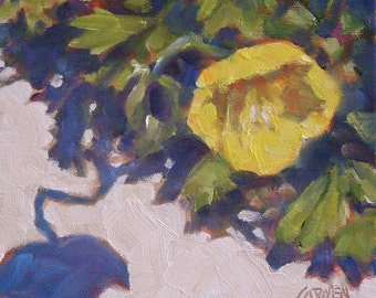 Poppy Shadow, 6x6 Oil on Canvas Panel, Original Daily Painting
