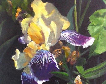 Purple and Yellow Iris, Oil Painting on Canvas Flower Art