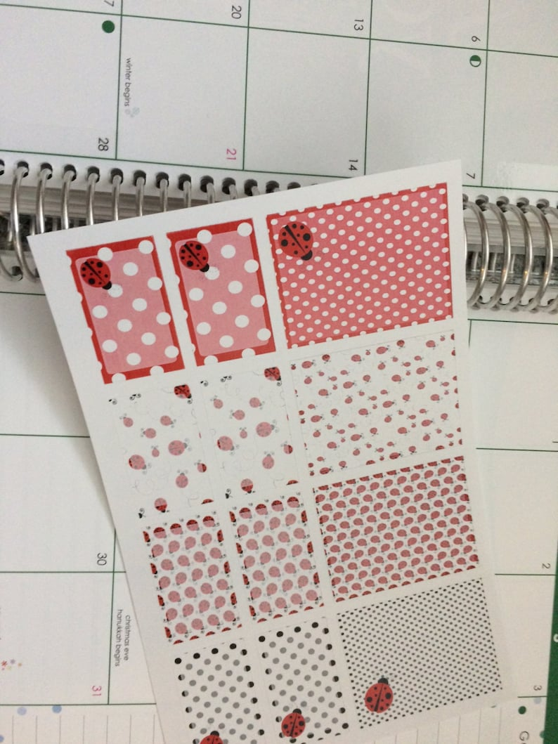 Planner Stickers Full Box Lady Bug Stickers Half Box Stickers image 0
