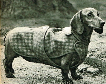 INSTANT DOWNLOAD- Vintage sewing pattern dachshund dog coat- diagram chart pdf