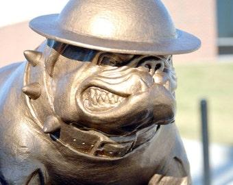 Sargeant Dawg ... Military Style English Bulldog Mascot