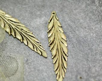 The long leaf