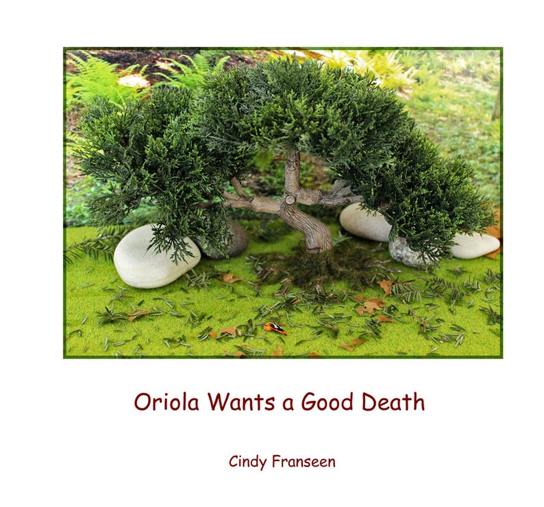 PDF Book...Oriola Wants a Good Death...photos and story by image 0