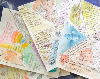 animal, vegetable, or mineral. oracle card reading with artwork, sent to you like a letter. hand drawn and painted. magical mail. art mail.