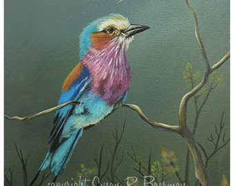Fine Art Print, 8 x 10 Lilac-Breasted Roller, Tropical Bird, Colorful Bird, Sitting on a Branch