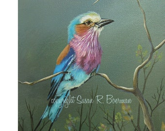 Blank Note Card, Lilac Breasted Roller, Tropical Bird, Colorful Bird, Bird Sitting on Branch