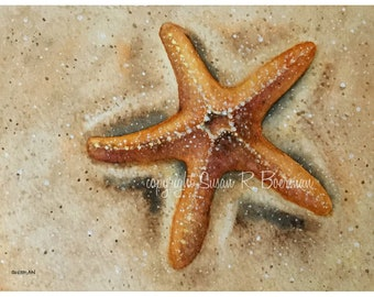 Blank Note Card, Starfish in the Sand on the Beach