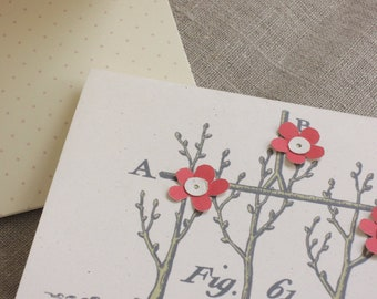 Cherry Blossom Espalier spring garden note cards set of 6