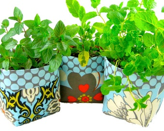 PlantSleeve (Instant Download) PDF Pattern- aGreenSleeve for your plants- flower pot, plant holder, cover, pot plant sleeve