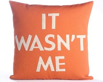 "Decorative Pillow, Throw Pillow, ""It Wasn't Me"" pillow, 16 inch"