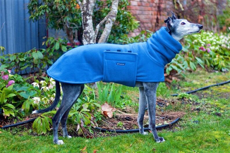 Fleece Greyhound Coat in Peacock Blue size medium--Greyhound CoatFleece Greyhound Coat Snood CoatSighthound CoatWinter Fleece Coat