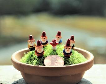 "Gnome-Miniature gnomes-Yoga Girl-Teeny Tiny Garden gnome-Teacher-Nun-Fireman-Policeman-1/2"" without post"