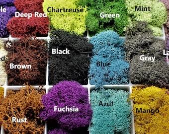 Reindeer moss-Preserved lichens-2 oz bag in your color choice-Deer foot Moss-Black-Mango-Soft reindeer moss