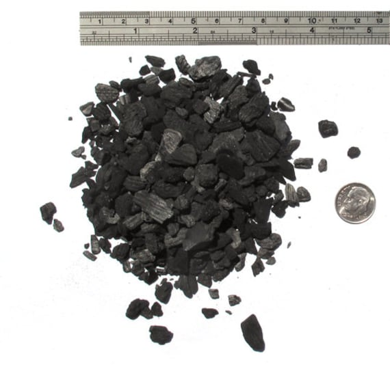 Horticulture Charcoal-Activated Charcoal for terrariums-Large 6 Oz Sandwich Bag