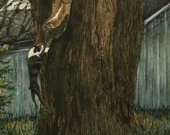 A Fine Art Watercolor Print of a Determined Boston Terrier Jumping Over 3' Vertically for Skunk in Tree an Inspiration by Janet Dosenberry