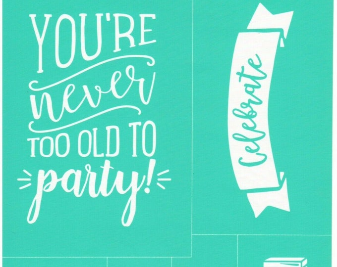 Chalk Couture You're Never Too Old To Party Unused Transfer Silkscreen Reusable Stencil DIY Craft Supply Celebrate Birthday Present