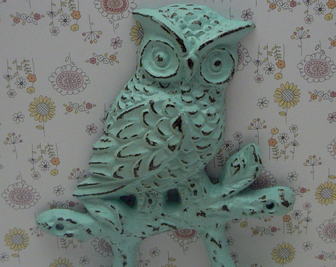 Owl Cast Iron Wall Hook Shabby Cottage Chic Wall Beach Blue Woodland Home Decor