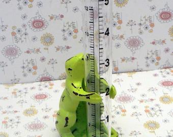 Frog Cast Iron Shabby Chic Rain Gauge Amphibian Lime Green