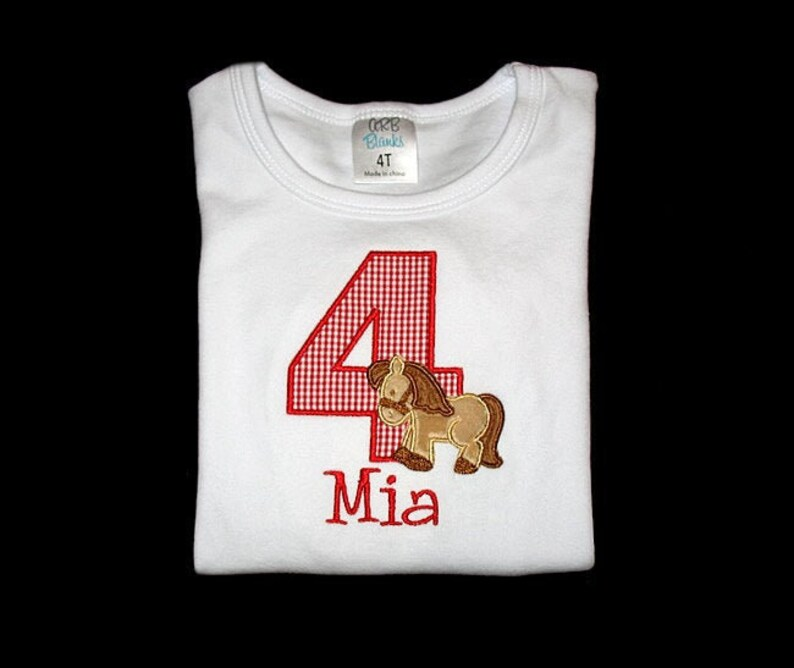 Personalized Applique Birthday Number with Furry Minky Fabric image 0