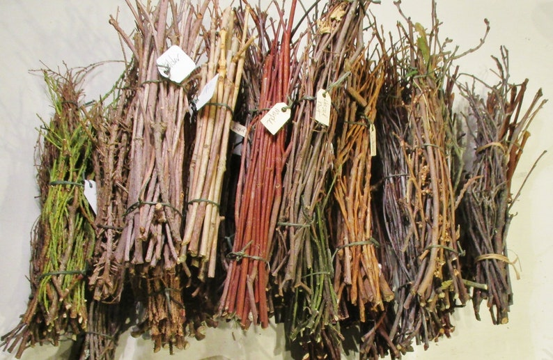 Wood Twig Bundles, 33 Sacred Woods for Wiccan Rituals, Crafts, and Decor