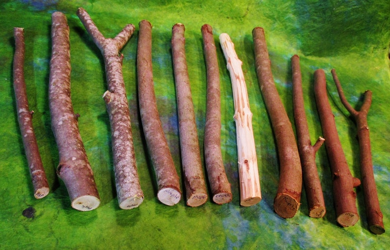 Maple wood sticks sugar maple wand carving wood witch and etsy