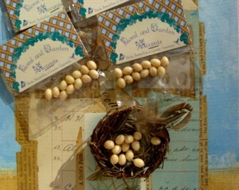 Tiny Speckled Tan Eggs for assemblage, altered or fabric journals and Farmhouse Nature Decor Dozen pcs