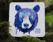 Watercolor Black Bear Sti...