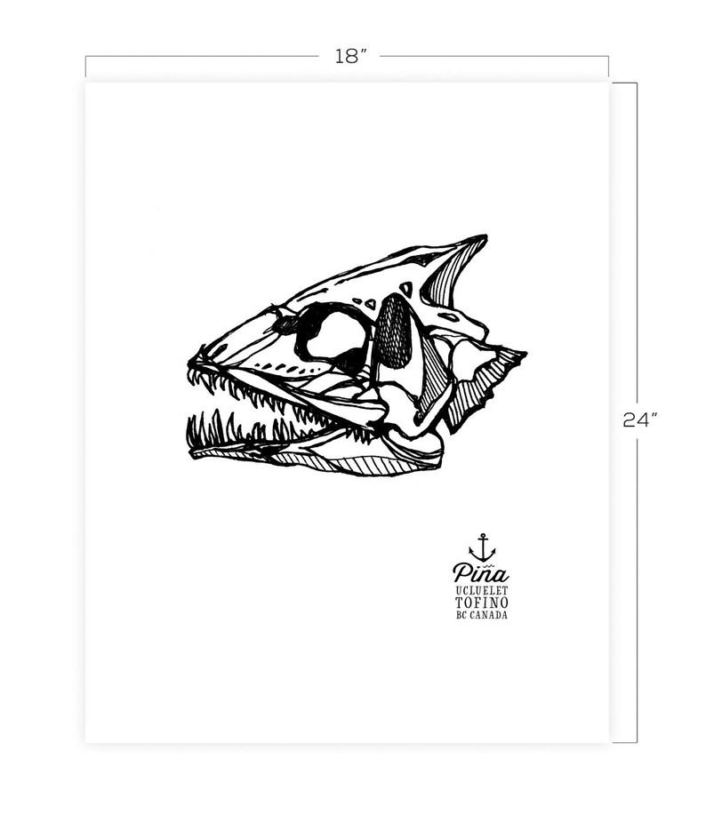 Fish Skull Downloadable Print 18 x 24 image 0
