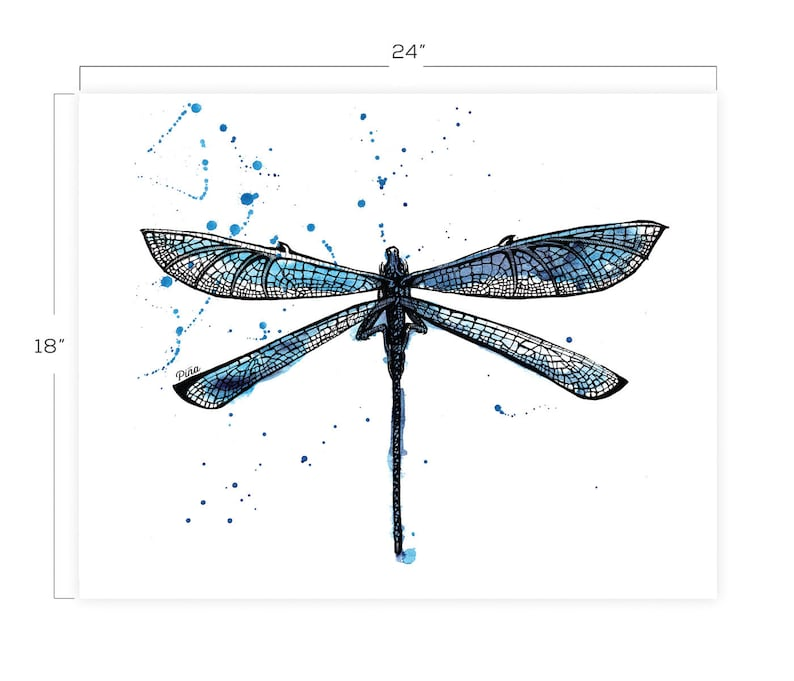 Dragon Fly Downloadable Print 18 x 24 image 0
